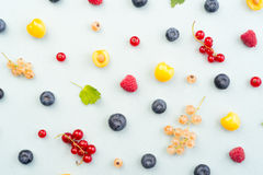 Berries isolated over white background table. Stock Photography