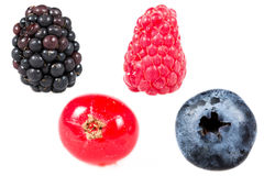 Berries isolated white background Royalty Free Stock Photography