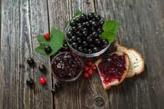 Berries and jam from black currant. Healthy breakfast. Berries and jam from black and red currant. Sandwich with jam stock photography