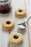 Berries jam cookies Stock Image