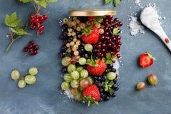 Berries jam Royalty Free Stock Photo