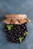 Berries jam Royalty Free Stock Photos