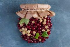 Berries jam Royalty Free Stock Image