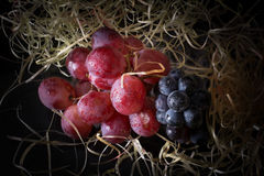 Berries. Juicy and fresh berries on hay Stock Photography