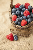 Berries on jute. Wicker basked filled with blueberries and raspberries on jute sack Stock Photography