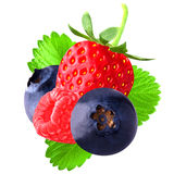 Berries with leaf on white background. Isolated fruits. Strawberry, raspberry and blueberry isolated on white background as package design element stock photo