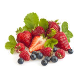 Berries with leaves royalty free stock photos