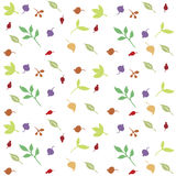 Berries. leaves. print with floral motifs. Stock Image