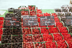 Berries on the market counter Royalty Free Stock Photo