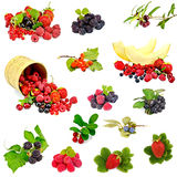 Berries and melon set Stock Images