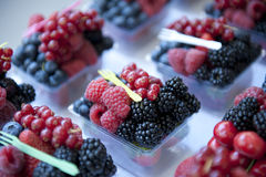 Berries Mix Stock Photography