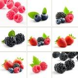 Berries mix Stock Photo