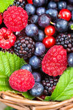 Berries mix closeup Royalty Free Stock Image
