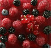 Berries mix dessert. Berries, mixed dessert with strwberry syrup stock images