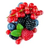 Berries mix isolated on white background. Mixed Pile of Raspberry, Red currant, Blueberry and Blackberry with mint leaves. Top stock images
