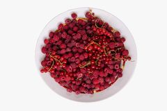 Berries mix with raspberry and red currant on grey background. Clipping path.  stock images