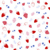 Berries mix seamless pattern. Vector illustration Stock Images