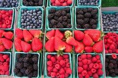 Berries and more berries Stock Photo