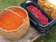 Berries and mushrooms Stock Images