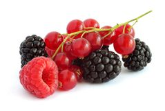 Free Berries On White Royalty Free Stock Images - 15331439