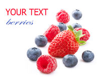 Berries over  White Stock Photography