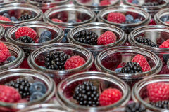 Berries and panna cotta. In a jar Stock Photos