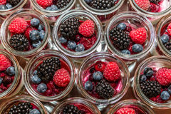 Berries and panna cotta. In a jar Stock Images