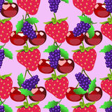 Berries pattern. Fruits sketch of fresh raspberry and cherry Royalty Free Stock Photography