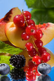 Berries and peach. Red currant, cranberry, black berry and peach Stock Photography
