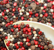Berries of pepper Royalty Free Stock Photos