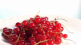 The berries on the plate. The berries currant on the rotate plate stock video footage