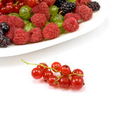 Berries in a plate on a white background Royalty Free Stock Photography