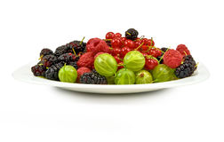 Berries in a plate on a white background Stock Image