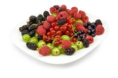 Berries in a plate on a white background Royalty Free Stock Photos