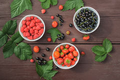 Berries in plates on the table. Food Stock Image