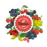 Berries Quality Flat Emblem Royalty Free Stock Photos
