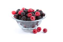 Berries: Raspberries And Blackberries Royalty Free Stock Image