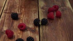 Berries, raspberries, blackberry, blueberries, bramble, dewberry, plate, blue background, small fruity, grain, seed, kernel, granu stock footage
