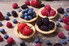 Berries : raspberries , blueberries , blackberries , strawberri. Es. Fresh summer berries in a tartlets on a wooden background Stock Image