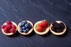 Berries : raspberries , blueberries , blackberries , strawberrie. S. Fresh summer berries in a tartlets on a stone background Stock Photography