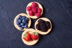 Berries : raspberries , blueberries , blackberries , strawberrie. S. Fresh summer berries in a tartlets on a stone background Stock Photos