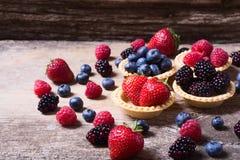 Berries : raspberries , blueberries , blackberries , strawberrie. S. Fresh summer berries in a tartlets on a wooden background Stock Image