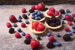 Berries : raspberries , blueberries , blackberries , strawberrie. S. Fresh summer berries in a tartlets on a wooden background Stock Photos