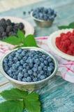 Berries and raspberries Stock Image