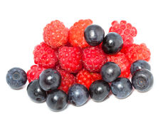 Berries of raspberry and bilberry. On white background Royalty Free Stock Images