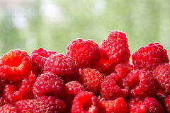Berries raspberry on a green background. Can be used as background Stock Photography