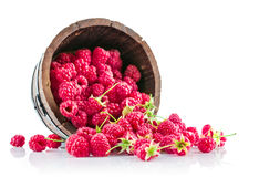 Berries raspberry in wooden basket. On white background stock photography
