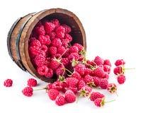 Berries raspberry in wooden basket Stock Photos