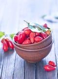 Berries Stock Photo