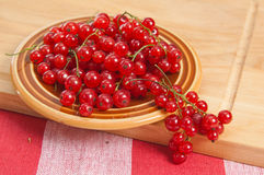 Berries of a red currant Stock Photos